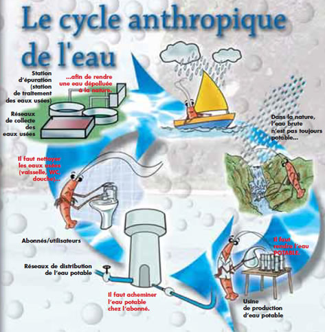 Le cycle anthropique de l'eau